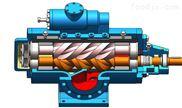 双螺杆泵 进口双螺杆泵