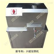 豪华型电动小型甘蔗榨汁机