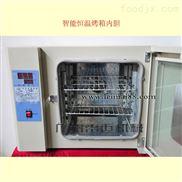 广东省多功能电热恒温干燥箱