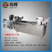 净菜加工生产线气泡清洗菜机
