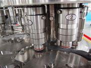 CGF-厂家供应矿泉水设备