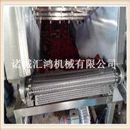 大枣清洗分级机 大枣生产线 成套设备