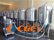 500升酒店自酿型啤酒设备