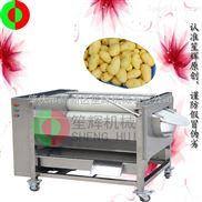 不锈钢毛刷瓜果脱皮机 去土豆皮机 洗莲藕机 全自动去鱼鳞机