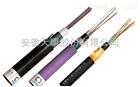 ADSS 24b1全介质自承式光缆