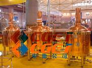 500升-山东中德精酿紫铜糖化设备