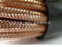 钢丝铠装计算机电缆