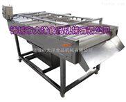 自动豆芽清洗机,气浪式樱桃清洗机
