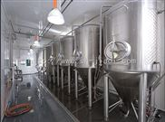 上海嘉迪啤酒发酵罐价格