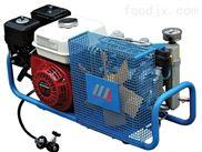 汽油驱动呼吸空气充填泵