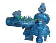 电动隔膜泵 DBY 不锈钢电动隔膜泵 电动泵 隔膜泵