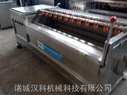 1500-貴州小黃姜清洗機