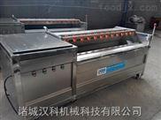 1000-四川小黃姜蔬菜清洗機