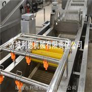 廠家直銷菠菜清洗機 全自動多功能果蔬清洗機