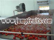 小型番茄沙司调配线