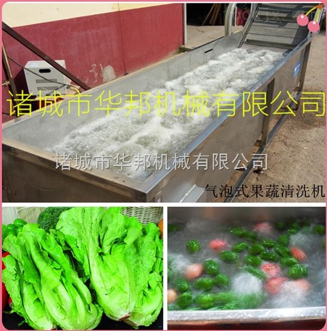 HB-胡萝卜清洗机 土豆清洗机