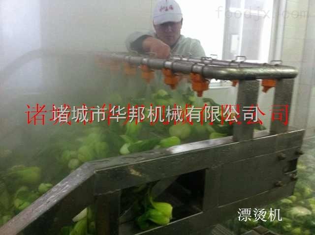 不锈钢蔬菜漂烫机