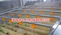 阿胶枣|红枣清洗机 山东亿马机械