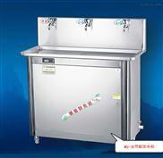 直热式饮水机,温热型节能饮水机