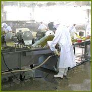 小型榨菜生产线批发
