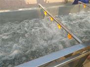 蓝莓酱生产线 水果清洗机