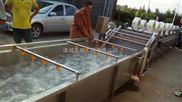 芥菜清洗机 榨菜生产线 果蔬清洗