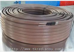 ZBR-J中温基本型伴热带电缆