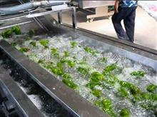 厂家供应包菜气泡清洗机