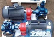 2CG-2CG高溫齒輪泵