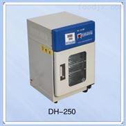电热恒温培养箱DH-250