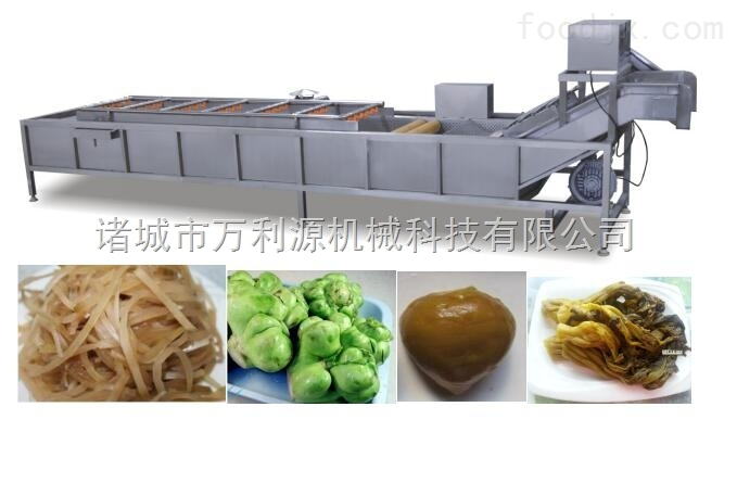 叶菜清洗机,叶类蔬菜清洗,汽泡水浴清洗机