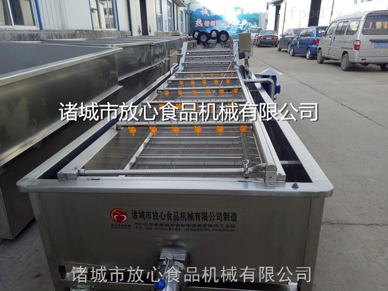 黄芪清洗机放心机械
