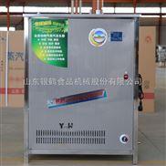 銀鶴節能蒸汽發生器 燃氣鍋爐 用于肉食加工廠 18162067983
