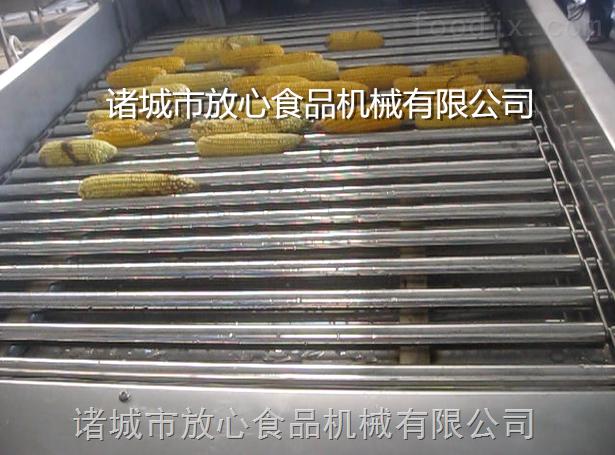 诸城玉米清洗机厂家