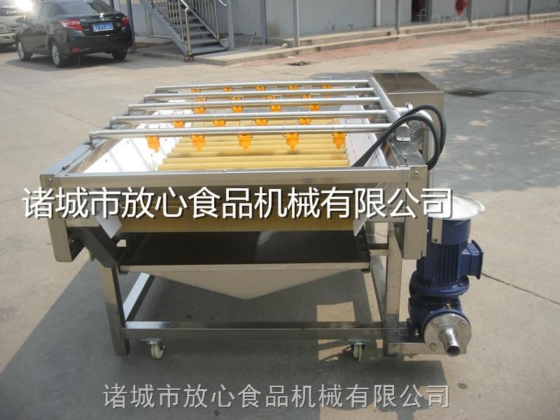荻笋清洗机 毛辊蔬菜清洗机放心机械