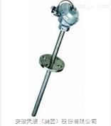 WRE2-012AT蒸汽管道热电偶