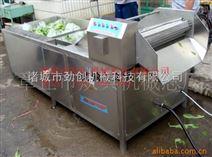 全自动根茎类蔬菜气泡清洗机