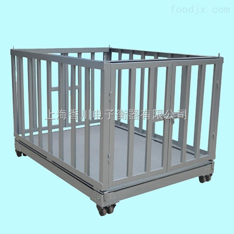 带围栏动物秤称牛马羊活动物地磅秤