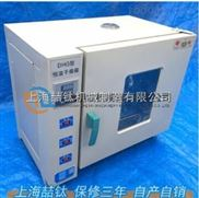 202-4A电热恒温干燥箱技术参数,电热恒温干燥箱现货,恒温干燥箱