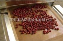 红枣微波烘干设备