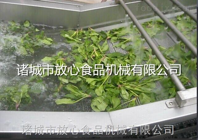 小白菜蔬菜清洗机