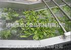 FX-800不锈钢蔬菜气泡清洗机