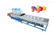 利农牌果蔬大小分选机(可分3-9级,处理3吨每小时)