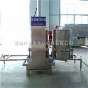 甘蔗压榨机 生姜压榨机 蔬果压榨机 不锈钢压榨机 支持定制