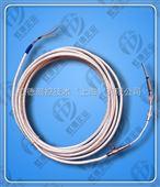 汽輪機熱電阻溫度傳感器虹德WZP2-3.2/200/5
