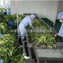 天津果蔬清洗加工流水线 中央厨房设备
