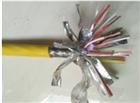 ZR-KX-HS-FFP-3*2*1.0阻燃补偿电缆