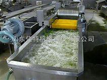 河南草莓清洗机,高压喷淋式清洗设备