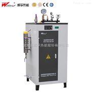 LDR-免检型蒸汽发生器厂家