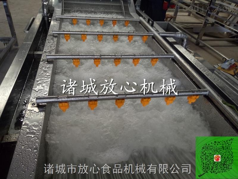 叶类蔬菜气泡清洗机 多功能蔬菜气泡清洗机
